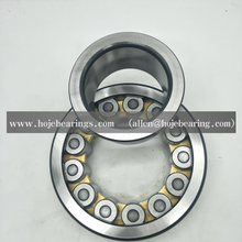 LSL192322 INA FAG BRAND CYLINDRICAL ROLLER BEARING